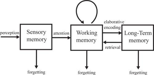 external image memory.jpg