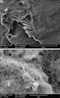 Figure 6. SEM images of serpentinite sand grain (above) and suspended clay fraction (below).