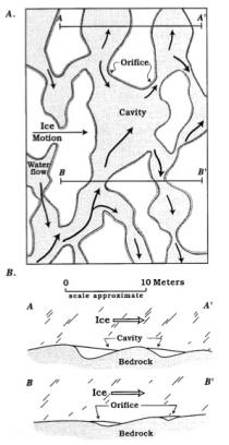 Schematic of subglacial cavity network