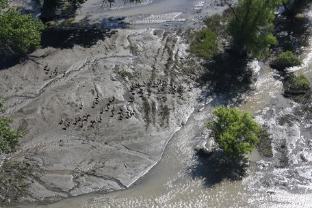 Yellowstone River Oil Spill