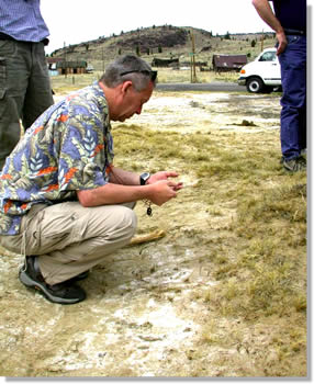Workshop speaker Mickey Gunter examines salt deposits along Silver Bow Creek resulting from mining upstream.