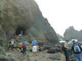 Oceanography pre-workshop field trip