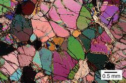Thin section featuring olivine crystals