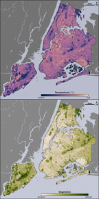 Satellite image of temp and vegetation of NYC