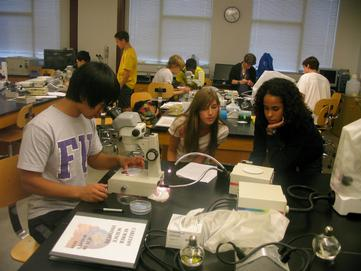 CSSI Neuro students in lab 2010
