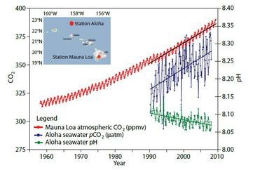 Atmospheric CO2 and Ocean pH