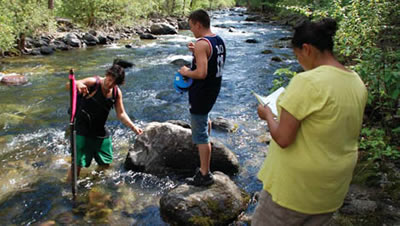 students collect water quality data