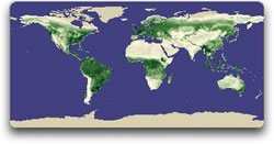 global image of vegetation May 1982