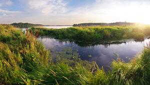 wetlands Moscow
