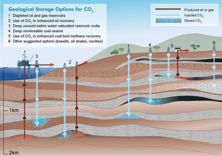 Carbon Geological Storage Options