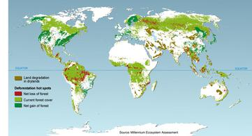 Deforestation hotspots