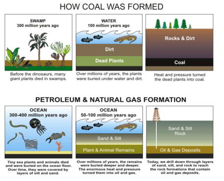 carbon dating fossil fuels Fossil fuels come from old organic material that has already depleted its carbon 14 and as a result new organic material appears older than it is new carbon-14 is created by cosmic rays bombarding the atmosphere, but that process isn't keeping up.