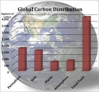 Global CaRBON DISTRIBUTION