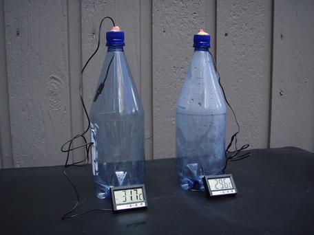 image of bottles