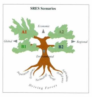 SRES tree graphic