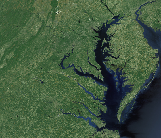 "a look at the chesapeake bay in america The confluence of the chesapeake bay  he observed that the most conspicuous triumph of the type was the ""victory of the yacht america in 1851  look into a."