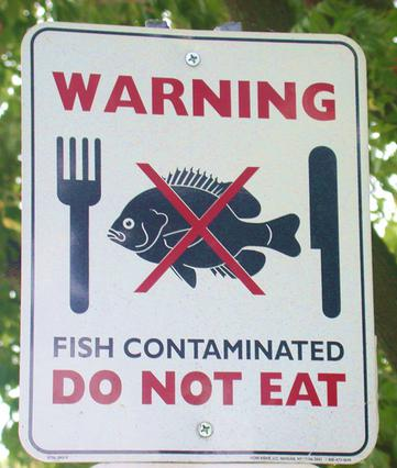 Warning: Do Not Eat