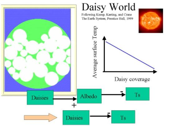 Daisy World Explanation 1 of 3
