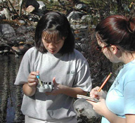 Students conducting pH and conductivity tests in the field