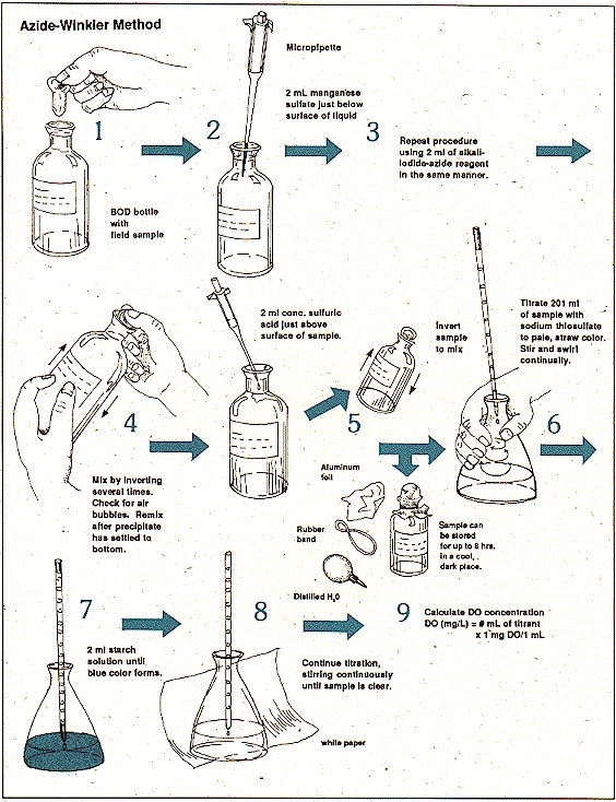 lab report redox reaction using sodium thiosulpahte solution An iodine / thiosulfate titration theory aqueous iodine solutions normally contain potassium iodide (ki),  the titration reaction may be represented by the equation: i2 + 2s 2o3 2- → 2i-+ s 4o6 2-  and the burette with the sodium thiosulfate solutionusing a pipette filler, fill the pipette with the potassium.