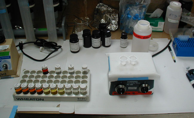 Example of the Winkler method to determin disolve oxygen content in lake water samples.