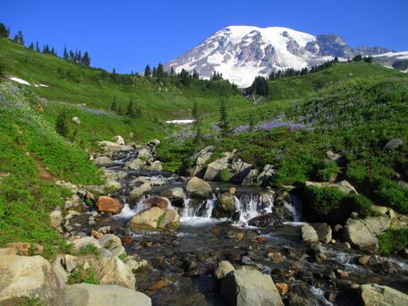 Mt. Ranier National Park