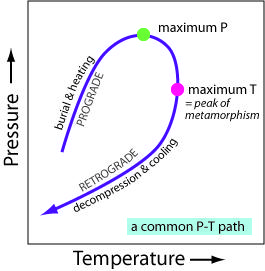A common metamorphic pressure-temperature path