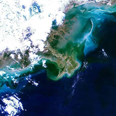 Satellite image of Mississippi River Delta.