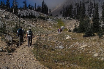 Hikers at treeline