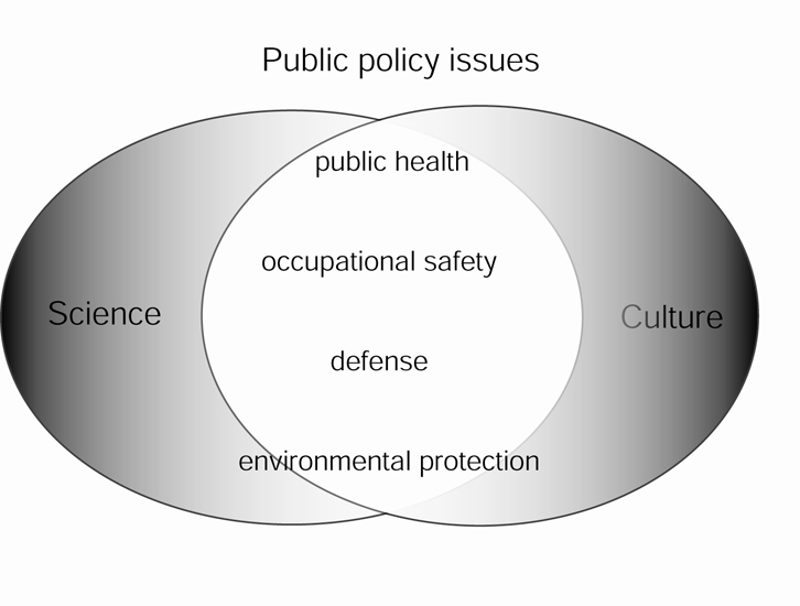 Public Policy Issues