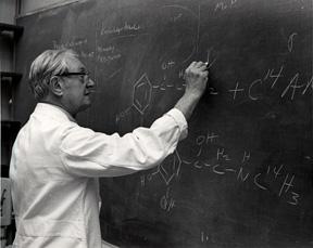 Scientist at a blackboard
