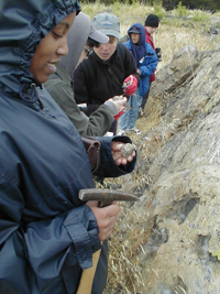 Teachers studying an outcrop during the SF-ROCKS summer workshop.