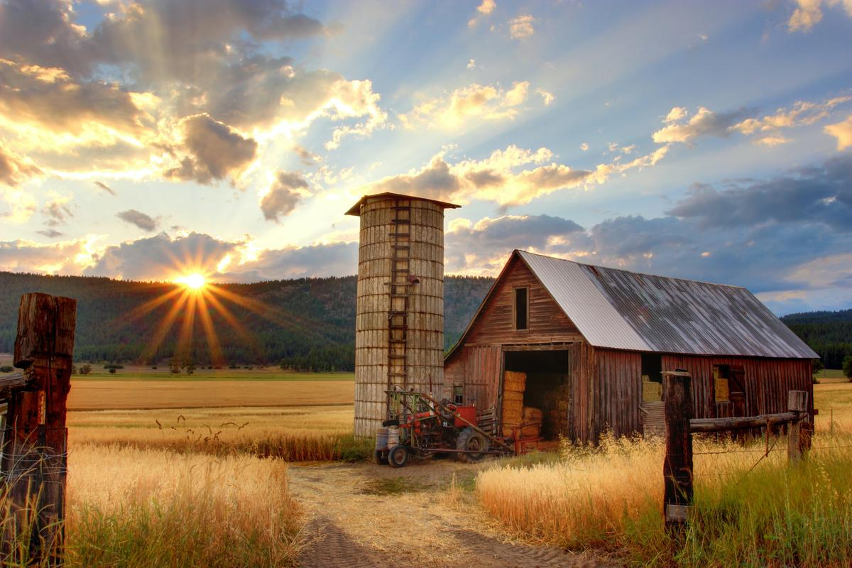 farm_timothy-eberly-XemjjFd_4qE-unsplash.jpg