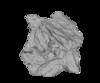 BIF-glomerate Rendering Image