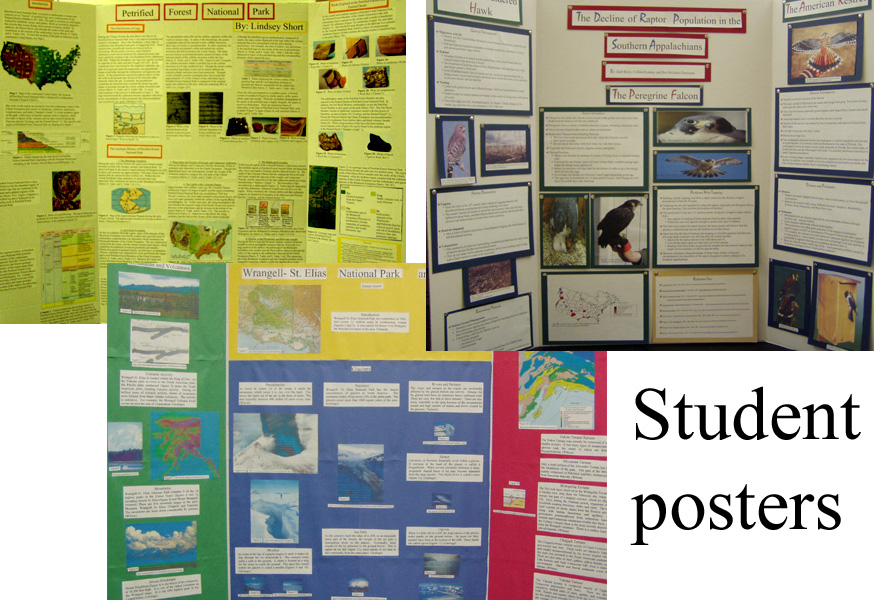 collage of student posters