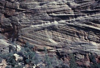Eolian cross-beds, Navajo Sandstone