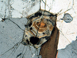 Chemically zoned allanite by Kurt Hollocher