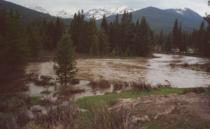 Colorado River, Rocky Mountain National Park