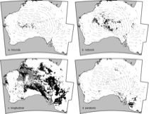 Fig. 3. Distribution of major dune types in the Australian dunefields.