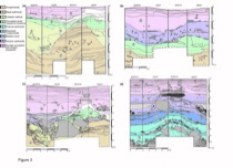 Sedimentary units in Liang Bua cave