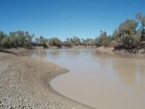 Goonbabinna Waterhole, Cooper Creek, SW Qld, Australia