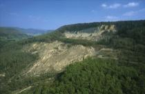 Hirschkopf Landslide