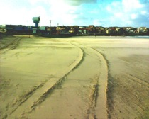Infilling of Vehicle Tracks