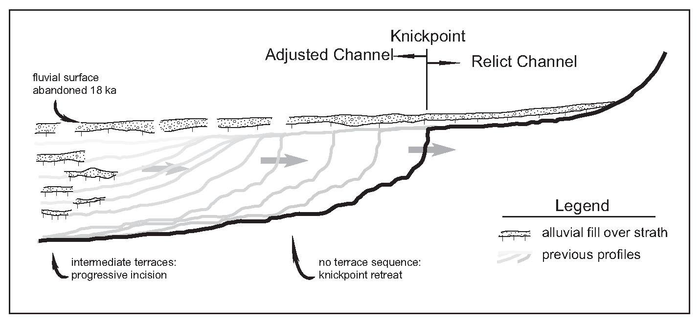 Diagram Test Point Diagram Full Version Hd Quality Point Diagram Neptunetransmissionandautorepair Godsavethekitchen Fr