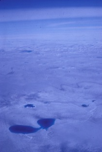 Meltwater Ponds on the Greenland Ice Sheet