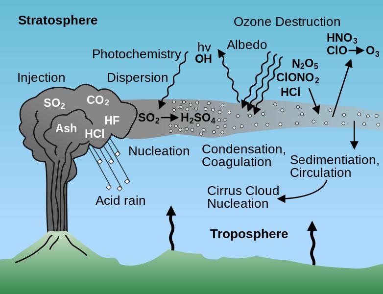 acid rain case analysis harvard Acid deposition case studies the czech republic background information since 1st january 1993 table 39: canadian acid rain control chronology.