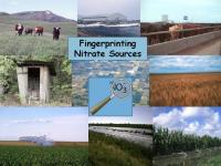 Sources of agricultural nitrate pollution