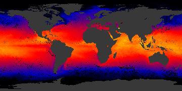 sea surface temp