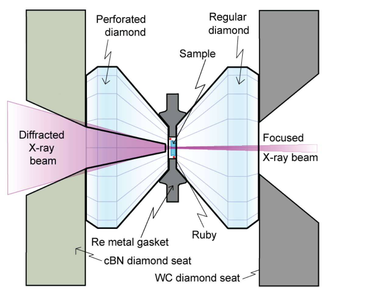 The Components of a Typical DAC Experiment