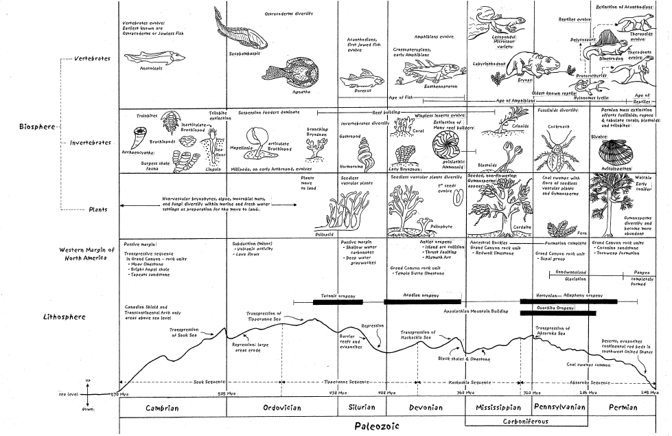 Historical Geology Timelines